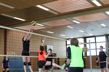 images/faecher/sport/weihnachtsturniere/volleyball_netz1_gr.jpg
